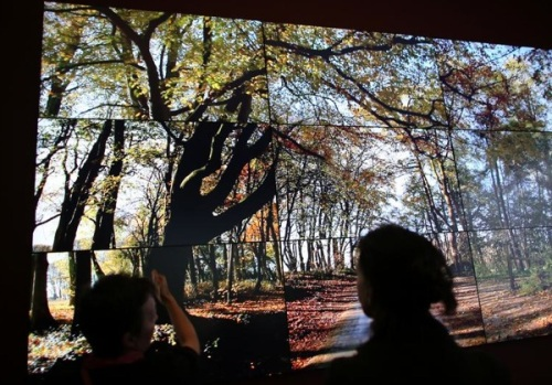 Hockney's Bigger Picture multi-screen video of Rudston Road. (Picture by Oliver Berg)