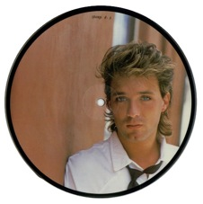 Spandau Ballet, picture disc, 1984, I'll Fly, Martin Kemp